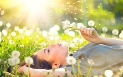 Four Remedies to Springtime Allergies