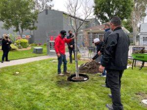 Tree Planting at Villa Del Sur