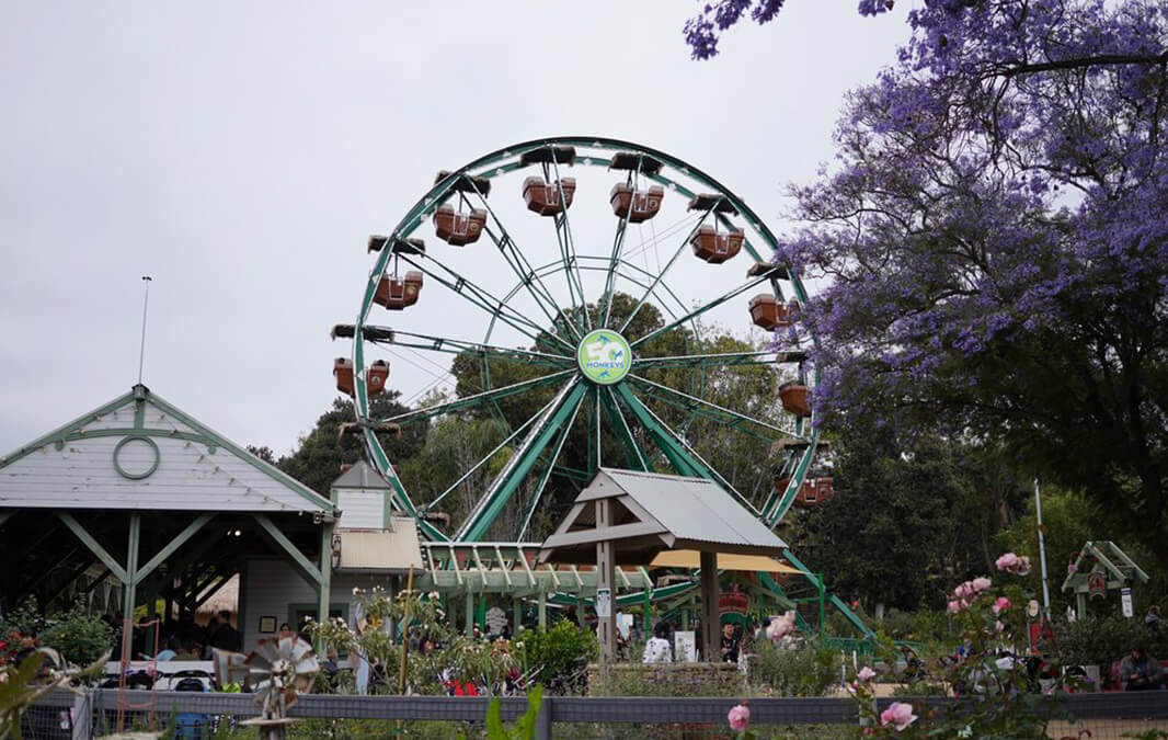 ferris wheel at a zoo with trees and people
